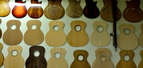 Taylor Guitars 018