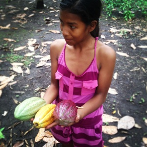 On my last trip to the Darien I stopped in on this girl's family, whom have had cacao trees around their houses as long as they can remember