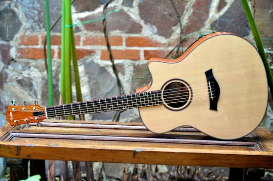 Hormigo Guitar IAF 1