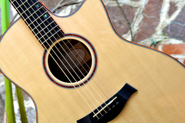 Hormigo Guitar IAF 7