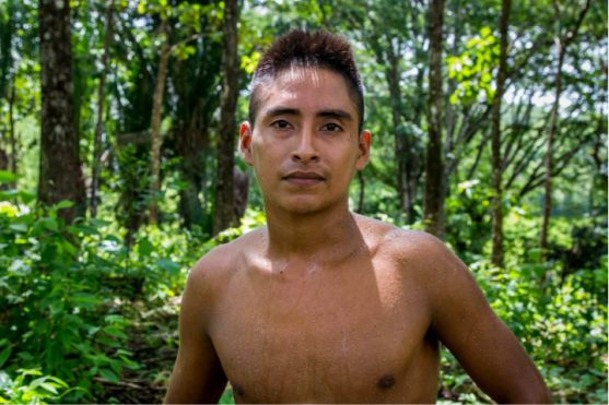 Name: Adelso Yavani Age: 20  Place of Residence: Seja Languages Spoken: Español Time Spent on Izabal Agroforest: 5 Years Jobs: Brush control, planting trees, trimming cacao Other Employment: Worked as campesino on other farms Future Plans: His plans for the future are to keep working and save money so he can have a good life ahead of him.  Opinion on Izabal Agroforest: this farm is better because it has more trees and animals