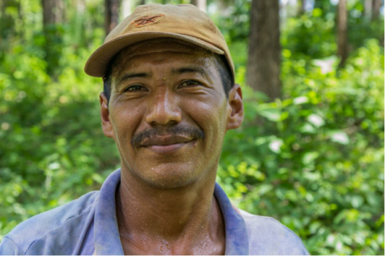 Name: Arnulfo Chacon Age: 34  Place of Residence: Seja Languages Spoken: Español Time Spent on Izabal Agroforest: 20 years Jobs: Taking care of the trees, working in the nursery, fertilizing plants  Other Employment: only worked on izabal agroforest, Future Plans: plans to just keep living and working on the farm Opinion on Izabal Agroforest: He says that for its size, it has a lot of different rare and special trees